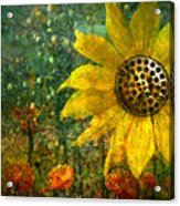 Flowers For Fun Acrylic Print