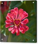 Flower's Heart Acrylic Print