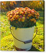 Flowers In A Bucket Acrylic Print