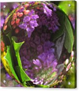 Flowers In A Raindrop Acrylic Print