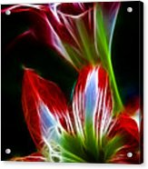 Flowers In Green And Red Acrylic Print