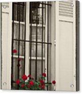 Flowers in Paris windowbox Acrylic Print