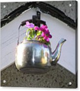 Flowers In Teapot Acrylic Print by Richard Mitchell