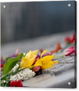 Flowers Memory Acrylic Print