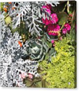 Flowers Of Boca II Acrylic Print
