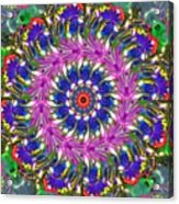 Flowers Of The Mind Number 2 Peacock Feathers Acrylic Print
