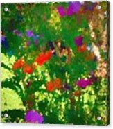 Flowers On Display As Abstract Art Acrylic Print