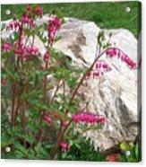 Flowers On The Rocks Acrylic Print