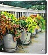Flowers Pots On Deck Acrylic Print