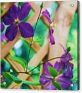Flowers Purple Acrylic Print