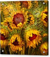 Flowers - Sunflowers - You're My Only Sunshine Acrylic Print by Mike Savad