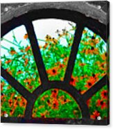 Flowers Through Basement Window At Monticello Acrylic Print