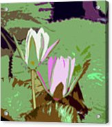 Flowers Work Number 3 Acrylic Print