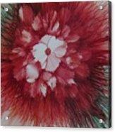 Flowerscape Just Beginning Acrylic Print