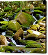 Flowing Mountain Stream Acrylic Print