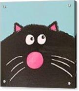 Fluffy Black Cat Acrylic Print