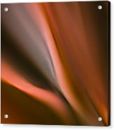 Fluid Blades Acrylic Print
