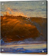 Flutter Of Amber Acrylic Print
