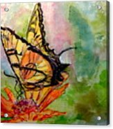 Flutterby - Watercolor Acrylic Print