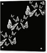 Fly Away Acrylic Print