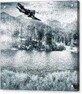 Fly Boy Acrylic Print
