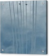 Fly Guy Formation Acrylic Print
