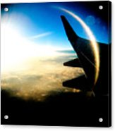 Fly Like A Dolphin Acrylic Print