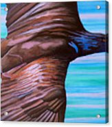 Fly Like An Eagle Acrylic Print