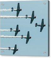 Fly Over  Acrylic Print