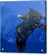 Fly Wild Fly Free Acrylic Print