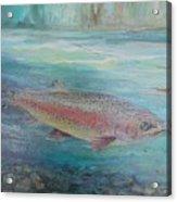 Flyfishing Acrylic Print