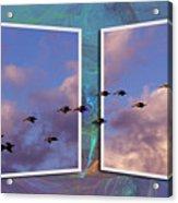 Flying Across Acrylic Print