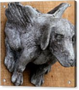 Flying Dog Gargoyle Acrylic Print by Katia Weyher