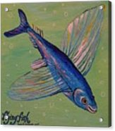 Flying Fish Acrylic Print