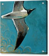 Flying Free Acrylic Print