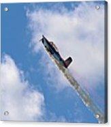 Flying High 1 Acrylic Print