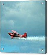 Flying High 2 Acrylic Print