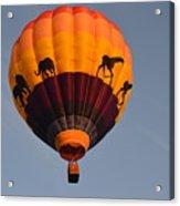 Flying High Acrylic Print