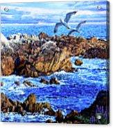 Flying High Over California Acrylic Print