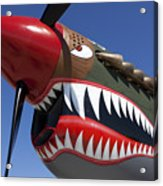 Flying Tiger Plane Acrylic Print by Garry Gay