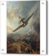Flying Tigers Xxl Acrylic Print
