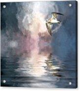Flying Towards The Light Acrylic Print
