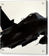 Flypass Acrylic Print