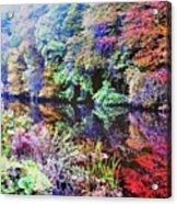 Foatie Of Photo Acrylic Print