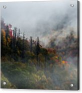 Fog And Color. Acrylic Print