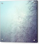 Fog And Ice Acrylic Print