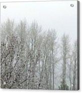 Fog And Light Snow Acrylic Print