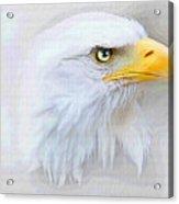 Fog Eagle Acrylic Print