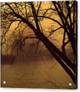 Fog In The Morning. Acrylic Print
