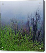Fog In The Mountains Acrylic Print